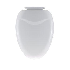 color toilet seat-1